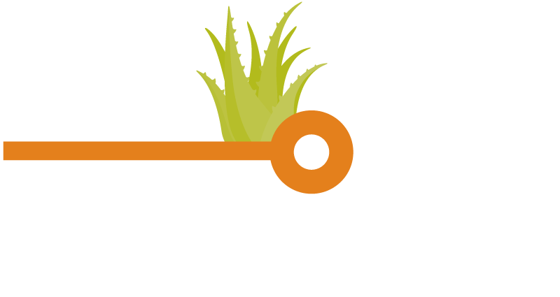 CEI-Logo-(Alternate).png